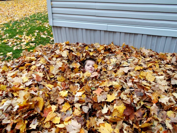 caiden in leaves