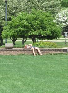 park guy