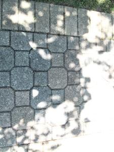 park sidewalk