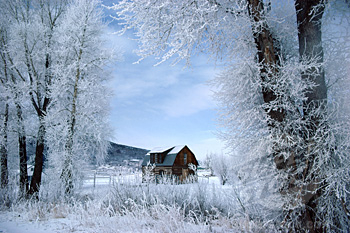 Log cabin on a snow covered landscape, Steamboat Springs, Colorado, USA
