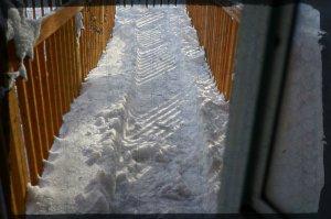 snow day 6 2014