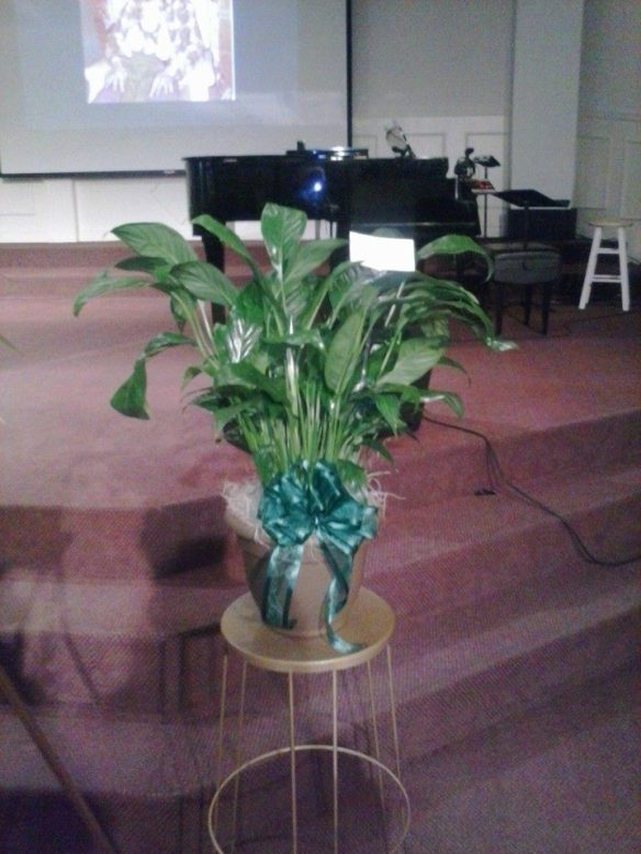 Al's funeral 3