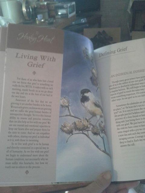 Alvin's memory book 2