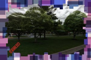 trees pavilion 2