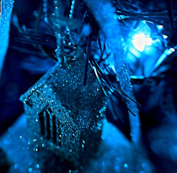 christmas shot 5
